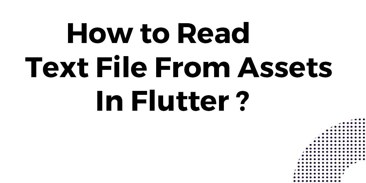 Read Text File From Assets In Flutter