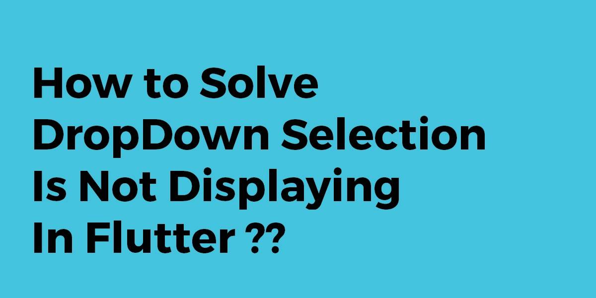 How to Solve DropDown Selection Is Not Displaying In Flutter
