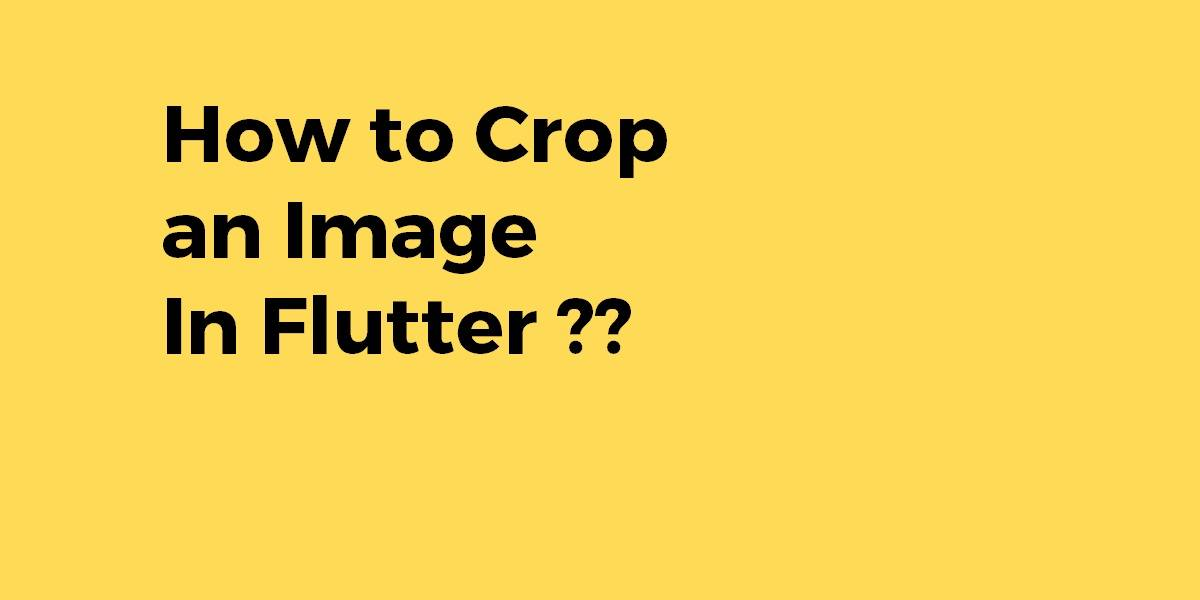How to Crop an Image In Flutter